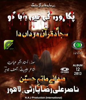 Nasir Ali Raza Party 2013 - www.ShiaMultimedia.com
